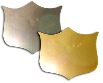 Wide Shape Flat 33mm x 39mm Shield